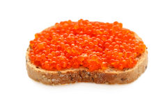Isolated caviar sandwich Stock Image