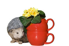 Isolated ceramic hedgehog and red cups with flowers Royalty Free Stock Images