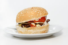 Isolated cheeseburger on a plate stock photography