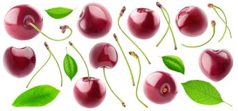 Isolated cherries collection royalty free stock photography