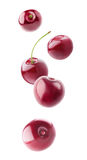 Isolated cherries flying in the air Royalty Free Stock Photos