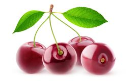 Isolated cherries in a row stock images
