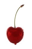 Isolated cherry Royalty Free Stock Image