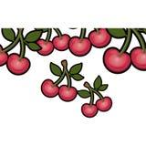 Isolated cherry fruit design Royalty Free Stock Photo