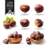 Isolated chestnut set with clipping path Stock Image