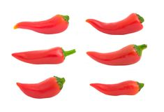 Isolated Chili Peppers Stock Photo