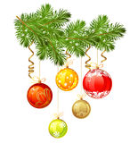 Isolated Christmas branch of fir-tree Royalty Free Stock Images