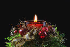 Isolated Christmas Flower Arrangement Stock Images