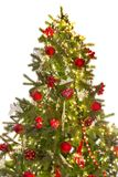 Isolated christmas tree Stock Photography