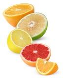 Isolated Citrus Fruit Halves