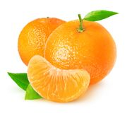 Isolated tangerine fruits royalty free stock photography