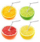 Isolated citrus juice collection Stock Images