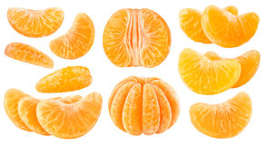 Isolated citrus segments Royalty Free Stock Photo