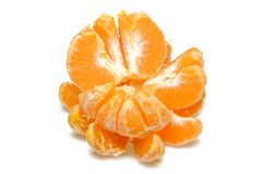 Isolated citrus segments. Collection of tangerine, orange and other citrus fruits peeled segments isolated on white background wit. Isolated citrus segments stock photography