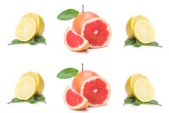Isolated citrus slices, fresh fruit cut in half orange, pink grapefruit, lemon, in a row, on a white background royalty free stock photo