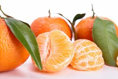 Isolated clementine Royalty Free Stock Images