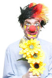 Isolated Clown In A Funny Summer Romance Royalty Free Stock Images