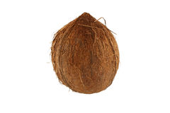 Isolated coconut on white background Royalty Free Stock Photos
