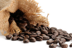 Isolated coffee beans Royalty Free Stock Photos