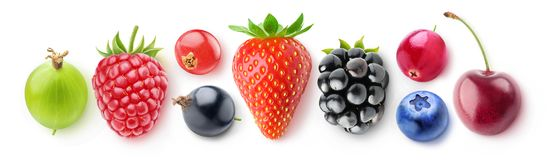Isolated collection of berries Royalty Free Stock Photo