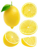Isolated collection of lemons Royalty Free Stock Images