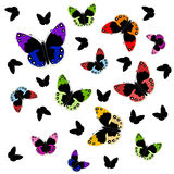 Isolated colorful butterflies Stock Photo