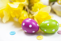 Isolated colorful Easter eggs and flowers Stock Images