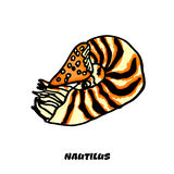 Isolated colorful Nautilus on a white background Royalty Free Stock Images