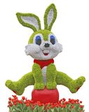 Isolated composed rabbit with flower tulips. Green flower rabbit on flower parade, vivid and lovely, composed by roses Royalty Free Stock Images