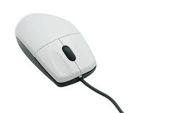 Isolated computer mouse Stock Image