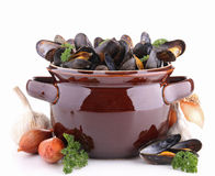 Isolated cooking pot with mussels Royalty Free Stock Image