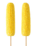 Isolated corns on stick Royalty Free Stock Images
