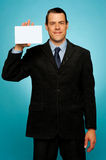 Isolated corporate man holding blank placard Royalty Free Stock Image