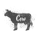 Isolated cow animal design Royalty Free Stock Images