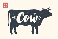 Isolated cow silhouette with lettering Stock Images