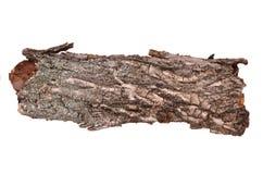 Isolated cracked bark stub log-wooden texture. Close-up of isolated cracked stub log bark with wooden texture isolated on white background stock photos