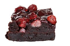Isolated cranberry brownie Stock Photos