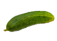 Isolated cucumber Royalty Free Stock Photos
