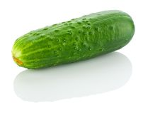 Isolated cucumber Royalty Free Stock Photo