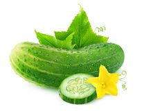 Isolated cucumber with flower and leaves. Isolated cucumber. One whole cucumber and a slice with flower and leaves isolated on white background with clipping Stock Image