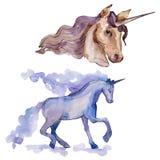 Isolated cute unicorn. Watercolor background set. Watercolour drawing aquarelle. Isolated unicorn illustration element. Isolated cute unicorn horse. Fairytale stock images
