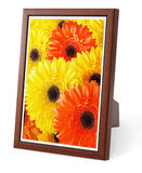 Isolated Decorative Picture Frame Stock Photo