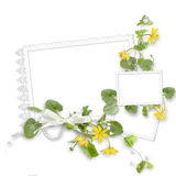 Isolated delicate frame for three photos Royalty Free Stock Photo