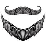 Isolated detailed beard vector illustration