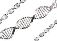 Isolated DNA Strands Stock Image