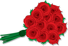 Roses Dozen Stock Image