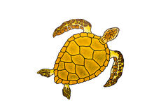 Isolated Drawing Of A Sea Turtle Stock Image