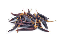 Isolated dried chili Stock Photography