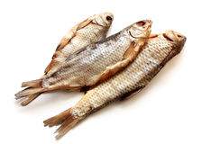 Isolated Dried Fish For Beer Stock Photography