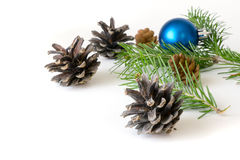 Isolated dry fir cones and tree toy Royalty Free Stock Photography